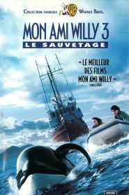 Sauvez Willy 3 : La poursuite